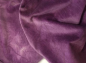 Purple Onion Velveteen